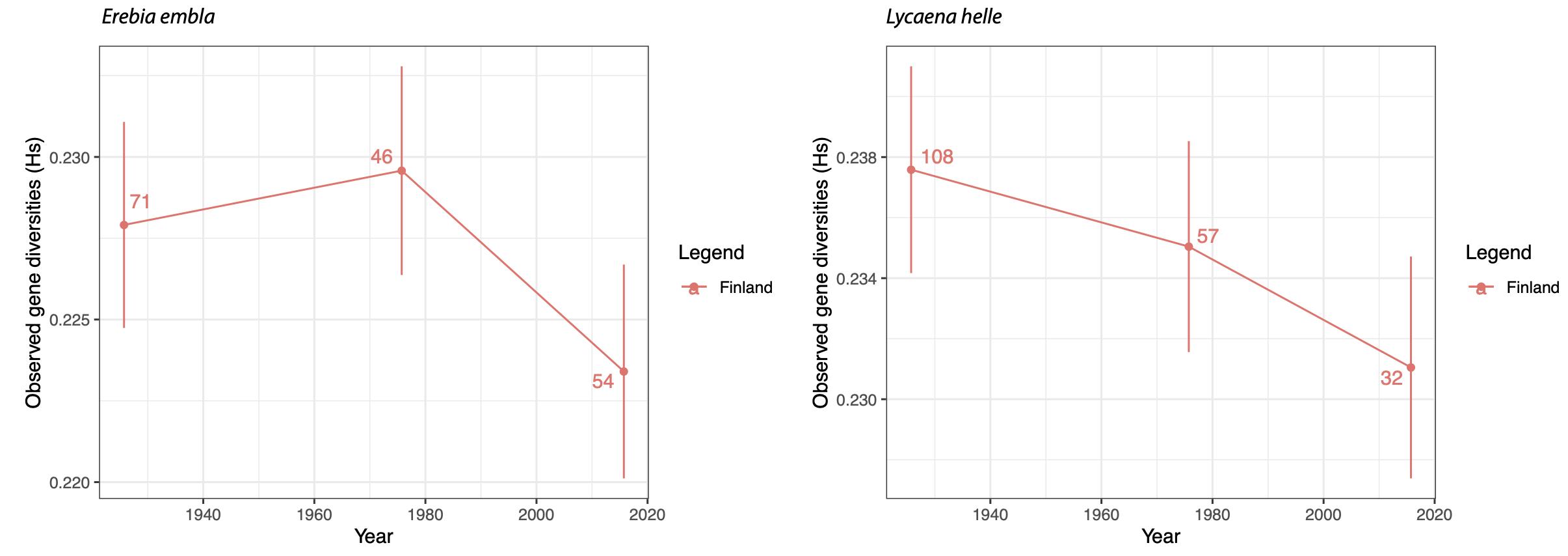 Graphique représentant l'évolution de la diversité génétique à l'échelle de la Finlande pour trois périodes (le début du 20ème siècle, le milieu du 20ème siècle, et le début du 21ème siècle), à gauche pour le moiré lapon (Erebia embla) et à droite pour le cuivré de la bistorte (Lycaena helle). L'axe vertical représente la diversité génétique et l'axe horizontal le temps, en années; les chiffres indiquent le nombre d'échantillons que nous avons analysés pour chaque période sur l'ensemble de la Finlande.